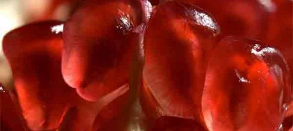 Oruç, kanserin DÜŞMANIDIR
